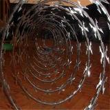Cbt-65 la lame de rasoir sur le fil de fer barbelé concertina