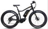 Neumático Fat bicicleta eléctrica con la mitad de Motor de accionamiento (TDE10Z-3)
