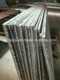 Pierre de marbre normale avec le panneau en aluminium de nid d'abeilles pour des Tableaux
