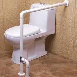 Штанги Assist туалета гандикапа ванной комнаты поставщика Китая Barrier-Free