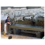 Steinpoliermaschine für Granit/Marmor (SF2600)