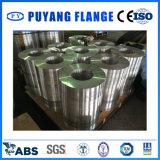 L'anello del piatto dell'alluminio 6061 ha forgiato la flangia (PY00111)