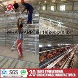Equipamento das aves domésticas usando o aço do standard internacional Q235 com certificado do Ce