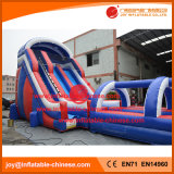 60 'Giant Double Lanes Slide Water Slide com piscina (T11-100)