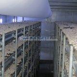 Clima Gerät für weißen Tasten-Pilz