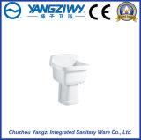 Stanza da bagno che lava la vasca di ceramica del Mop della Cina