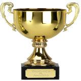 Trofeo personalizzato del premio dell'oro di alta qualità
