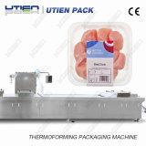 Machine à emballer automatique de vide de Thermoforming de poulet Thermoformer (DZL)