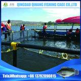長い耐用年数の中国の熱い販売の普及した深海の魚のケージ