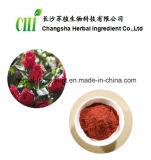 Acido selvaggio dell'estratto 5%Organic della Rosa per il supplemento degli alimenti