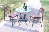 Meubles en rotin de loisirs de plein air Table-8