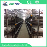 Dyz Serie H Type Broiler Cage System Voor Chicken House
