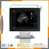 Equipo veterinario Touchscan Ts60 de la examinación del ultrasonido
