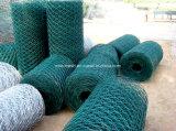 Наговор PVC Coated. Ячеистая сеть/сетка мелкоячеистой сетки