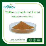 Migliore polvere dell'estratto di Wolfberry di prezzi