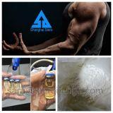 Подгонянный стероидный ацетат Primobolan Methenolone жидкостей для быстро увеличения мышцы