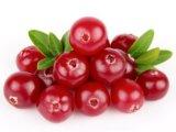 Cranberry выжмите сок из порошка для напитков и продуктов питания вкус