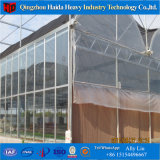 Low Cost Polycarbonate PC Greenhouse Tunnel for Agriculture