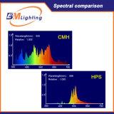o reator terminado dobro de 1000watt CMH Digitas para hidropónico interno cresce sistemas