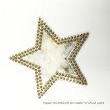 Popular Costume star Rhinestone Motif Hotfix Rhinestone Patch for Garment (TP-STAR)