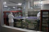 Silikon-photo-voltaisches Solarpanel des einzelnen Kristall-295W, monokristalliner Sonnenkollektor