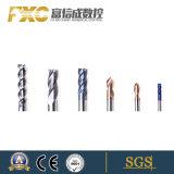 Banheira de venda de carboneto de Flauta Fxc-08 2 brocas de torção