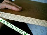 Madera contrachapada marina laminada superventas del grado de Okoume impermeable para la tarjeta de la construcción