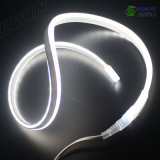 Mini LED Neon (8*16mm)