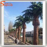 Albero artificiale esterno della palma da datteri di vetro di fibra della decorazione