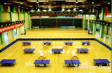 2018 Hot Sale Indoor Sports PVC laminés pour tennis de table fabriqués en Chine