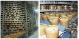 Transporte refrigerando personalizado fábrica da espiral do alimento IQF para Austrália