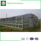 활 모양으로 한 자동 수동 식물성 온실