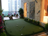Putting Green, Golf Grass, herbe artificielle pour terrain de golf (G13-2)