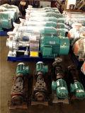 Pompa fluida termica industriale di alta qualità