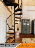Винтовая лестница древесины слабой стали профессионального изготовления нутряная