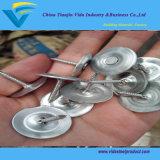 Chiodi rotondi della massoneria della protezione del metallo/chiodi della massoneria protezione quadrata del metallo