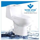Керамические Siphonic Weidansi S-Trap одну деталь туалета (WDS-T6122)