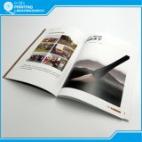 Conception brochure couleur A4 de l'impression
