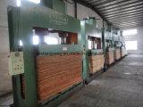 中国600tの木工業の出版物の最高と評価された製造者の木工事のための油圧冷たい出版物機械
