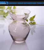 Ваза цветка творческой конструкции прозрачная круглая стеклянная с украшением шнура