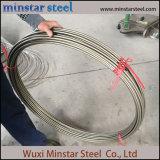 Высшее качество 316L труба из нержавеющей стали для транспортировки газа тормозной жидкости