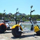 2017 이동할 수 있는 건전지를 가진 2개의 바퀴 Citycoco 뚱뚱한 타이어 Harley 전기 스쿠터