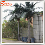 人工的なココヤシの木の木を美化する常緑の庭