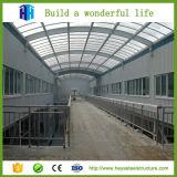 Tettoia prefabbricata del fabbricato industriale della struttura d'acciaio dell'ampia luce di qualità