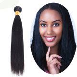 ブラジルの毛1bカラー自然なカラーは人間の毛髪7Aの等級のバージンの毛を束ねる