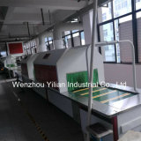 Transportador duradoura da sapata (Equipamento duradouro da linha de produção)