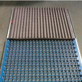 Maglia del filtro/maglia del filtro filtro dell'olio Mesh/Perforated