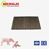 돼지를 위한 최신 판매 무쇠 판금