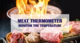 BBQ de Maat van de Temperatuur van de Thermometer van het Vlees