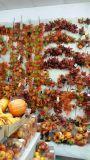 人工的なフルーツグウJy601155453の人工的なプラントそして花